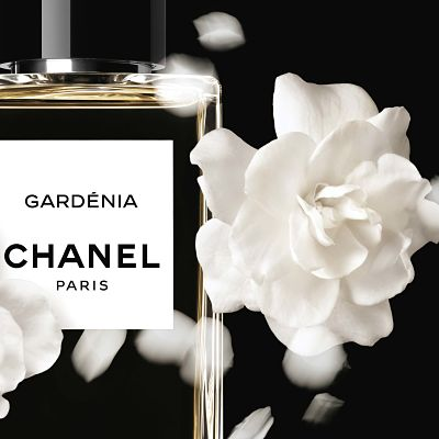 imagen2 perfumes