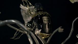 youtube.-parfum