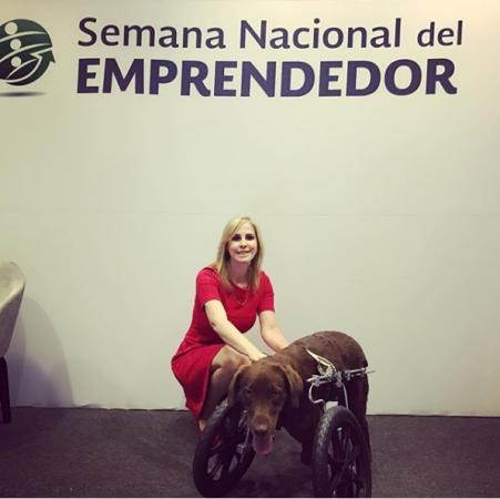 fundación milagros caninos.png